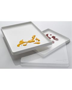 Painting Trays