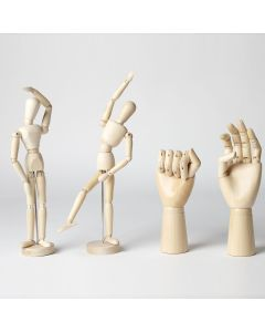 Anatomical Figures Assortment. Pack of 4