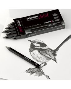 Spectrum Artist Chunky Graphite Sticks